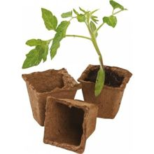 Peat pots Garland for seedlings - 12 pcs, 8 cm