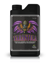 TARANTULA 500ml - stimulator